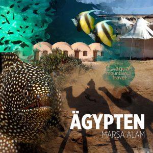 Tauchreiseprogramm Red Sea Diving Safari